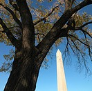 Washington Monument in Washington, D.C., USA