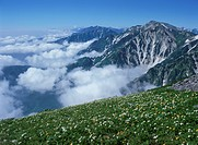 Nature In Nagano (thumbnail)