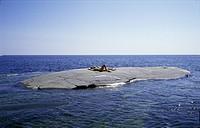 People lying on rock in sea ungt par solar nakna på ett eget skär i stockholms skärgård