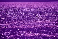 The Sea Surface Which Shines Purple