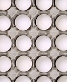 Vita ägg i äggkartong. White Eggs In A Carton, Close Up, Full Frame