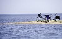 Cycle on beach två stycken cyklar på ön Neringa i Litauen