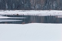 Pond In Snowy Fields (thumbnail)