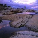 Kustlandskap Med Klippor, Rosafärgade Moln, Inskjutande Vatten Och En Ensam Björk På Höjden, Blekinge, Elevated View Of Rocks In Sea At Dusk