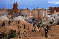 Rock formations at Bryce Canyon, Utah, USA