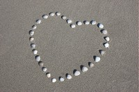 Heart made from sea shells at the beach of the North Sea, Denmark
