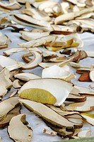 Sliced mushrooms are prepared for drying