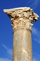 Column with Corinthian capital Leptis Magna Libya