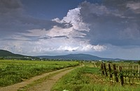 Clouds of thunderstorm above vineyard and way near Leobersdorf Lower Austria Austria