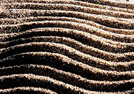 Brown sand stripes
