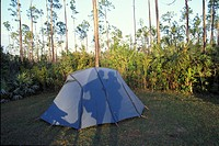 Shadow of a couple on tent campground Everglades Florida