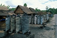 CHARCOAL for sale at roadside. This adds to the problem of deforestation and hence erosion. Madagascar