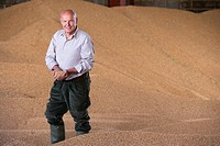 Portrait of farmer cupping wheat grains on grain heap