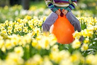Girl bouncing on hoppity horse in daffodil field