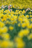Young girl finding Easter egg in field of daffodils