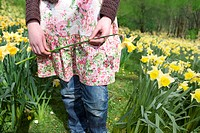 Young girl holding yellow daffodil (thumbnail)