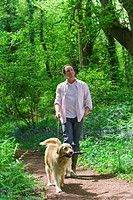 Man and dog walking in forest among bluebell flowers