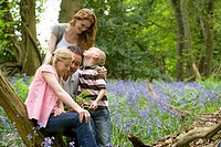 Family walking through field of bluebell flowers