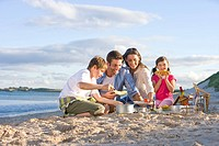 Family having picnic on beach (thumbnail)