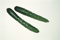Two Cucumbers (thumbnail)