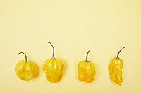Four yellow bell peppers in a row