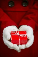 Gloved Hands Holding Gift