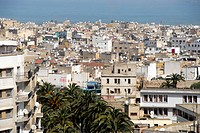 View of palm tree avenue the old city medina and the sea Cacablanca Morocco