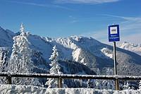 Winter landscape, Berchtesgaden, Bavaria, Germany