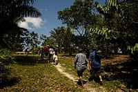 Forest, People, Barreirinha Community, Macaco River, Manaus, Amazônia, Amazonas, Brazil