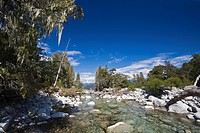 River inflow to the lake Nahuel Huapi, national park Parque Nacional Nahuel Huapi, lake region of northern Patagonia, Argentina, South America