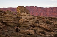 Rocks at National Park Parque Provincial Ischigualasto, Central Andes, Argentina, South America