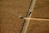 Agriculture _ Aerial, grain corn harvesting / CA _ Yolo Co.