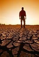 Agriculture _ A farmer stands in his field in which his crops were destroyed, first by flooding, then by drought. All that remains is cracked mud / Ca...