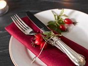 Place_setting with rose hips