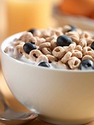 Oat Ceral with Blueberries and Milk, Close Up