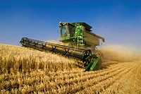 Agriculture _ A John Deere combine harvests barley on steep hillside terrain / WA _ Palouse Region, near Pullman
