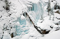Snowy landscape, Johnston Canyon, Banff National Park, Alberta, Canada