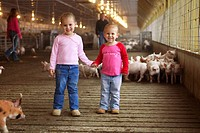 Agriculture _ Two young girls pose inside a hog confinement facility with their pork producer parents in the background / near Shoeneck, Pennsylvania,...