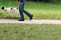 Woman walking dog on path, cropped