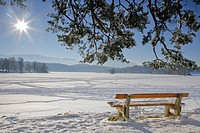 Bench, view of the frozen over Staffelsee Lake in winter, Garmisch-Partenkirchen district, Upper Bavaria, Germany, Europe