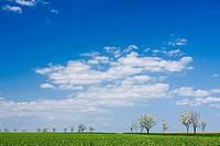Spring landscape near Hnevotin, Moravia, Czech Republic, Europe