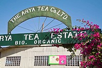 India, West Bengal, Darjeeling, Arya Tea Estate, Factory