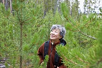 Senior Japanese woman hiking in forest