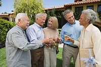 Senior people raising toast in garden while birthday party