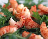 Crayfish Salad