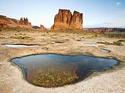 The Organ and the Three Gossips rise high above a slickrock bench marked with rainwater filled potholes in Arches National Park near Moab, Utah