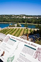 Cotes du Rhone vineyard information board with river Rhone in background, Avignon, Provence, France