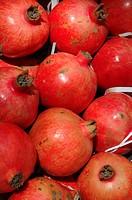 Pomesgranates