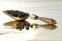 Coffee beans in a shovel