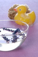 Lavender in a glass bowl and rubber duck